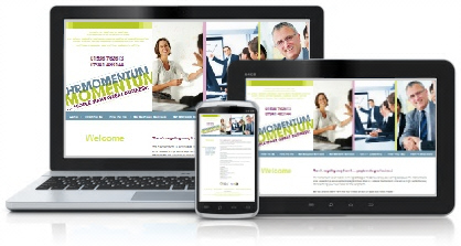 HR Momentum Website - Northants
